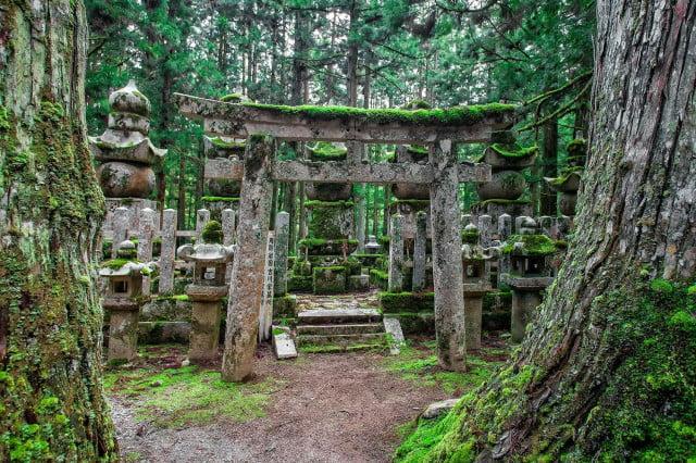 Encontrando a Buda: Por qué la épica peregrinación de Kumano Kodo en Japón debería estar en tu lista