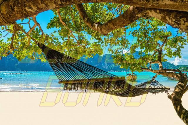 Micro Guide: Tobago