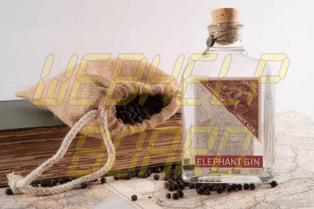 Swill--Elephant-Gin-does-London-Dry-with-a-unique-African-twist_