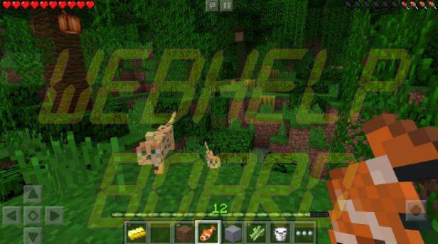 Minecraft Android Game