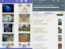 Sugerencia: recuperar archivos Android eliminados