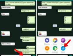 Tutorial: Cómo enviar varios contactos al mismo tiempo en WhatsApp