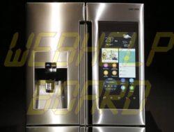 Vea consejos sobre cómo limpiar correctamente su refrigerador