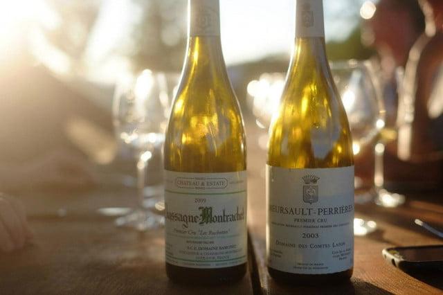 Únete al Culto: Los cinco mejores vinos de culto del mundo