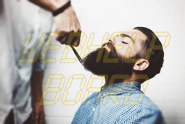 La guía del Manual para dar forma a una barba