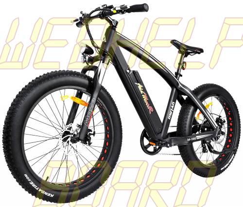 Addmotor MOTAN Electric Bicycle