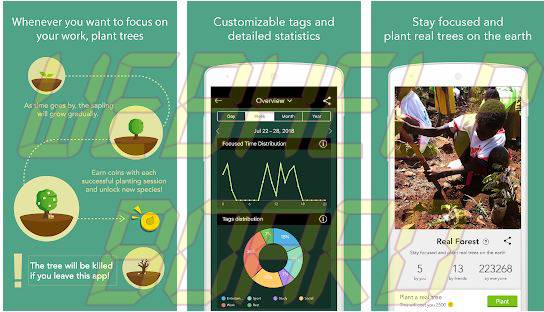 Forest Stay Focused app