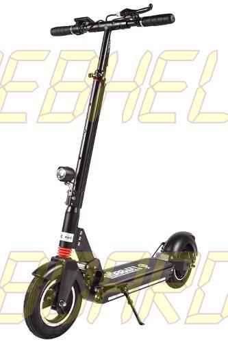 FreeGo 10 pulgadas Folding Electric Kick Scooter