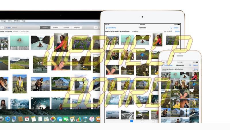 live_photos_screenshot.jpg