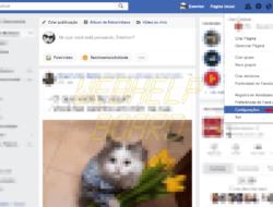 Eliminación de aplicaciones y sitios web permitidos en tu cuenta de Facebook